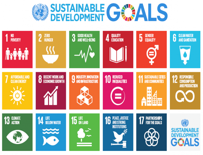 Lack Of Focus On Aging In The Un Sustainable Development Goals on United Nations Goals